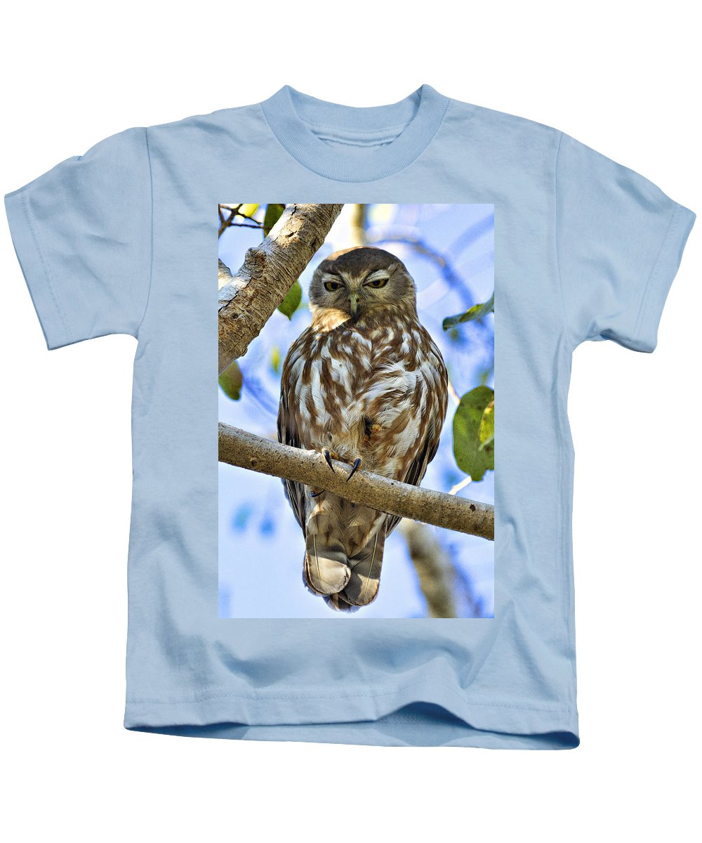 Barking Owl Kids T-Shirt featuring the photograph Sleepy Eyes by Douglas Barnard