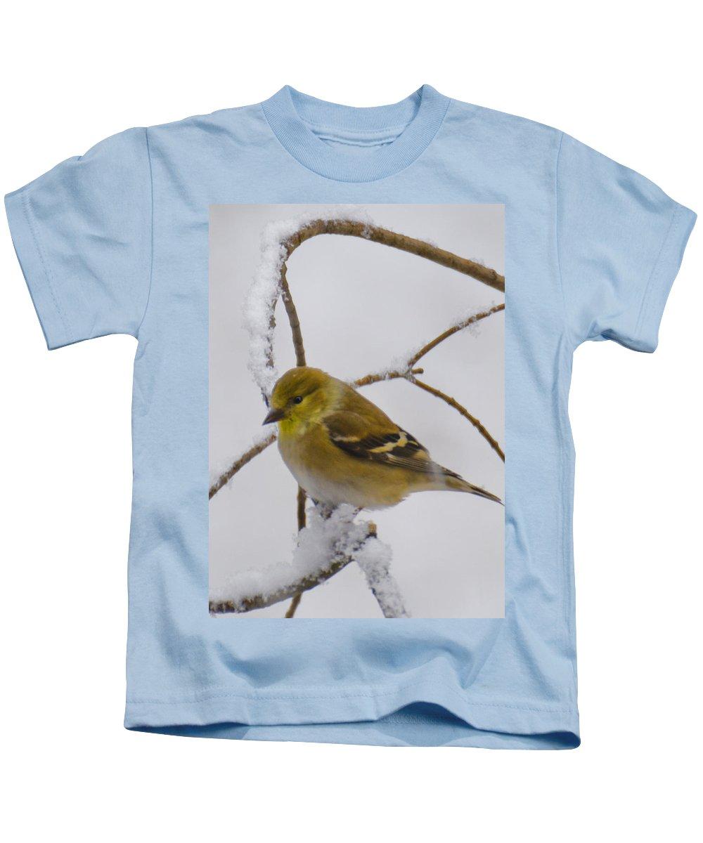 Usa Kids T-Shirt featuring the photograph Snowy Yellow Finch by LeeAnn McLaneGoetz McLaneGoetzStudioLLCcom
