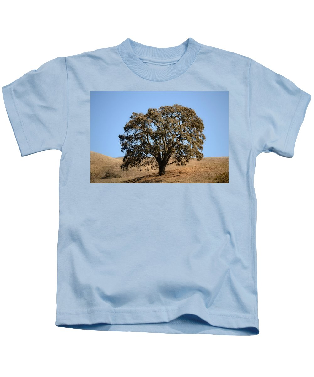 Kids T-Shirt featuring the photograph Tree In Winter by Karen W Meyer