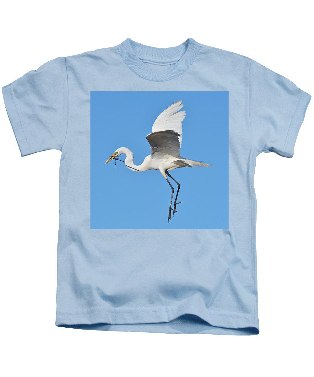 Egret Kids T-Shirt featuring the photograph Great Egret by Lindy Pollard