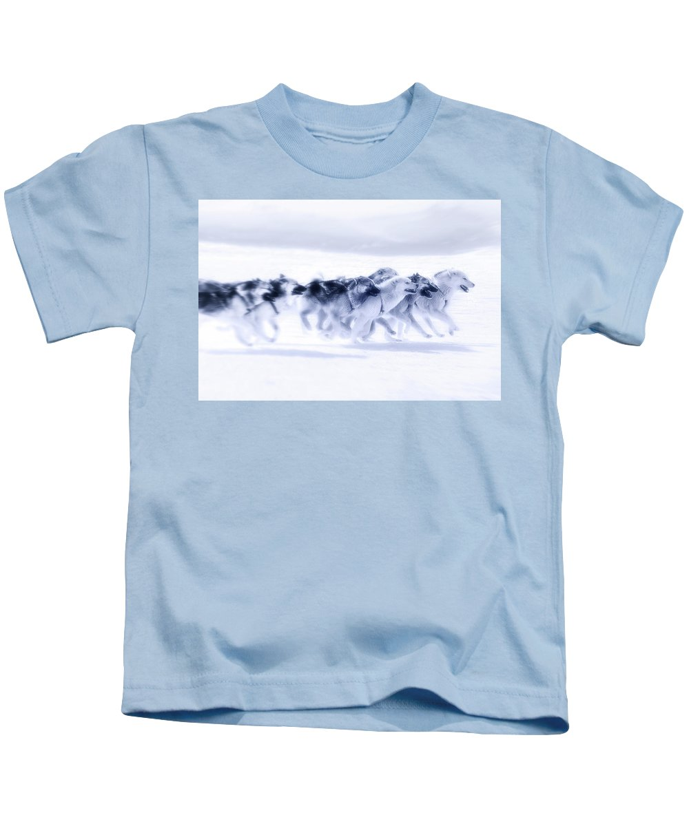 Husky Kids T-Shirt featuring the photograph Huskies In Ilulissat, Greenland by Joana Kruse