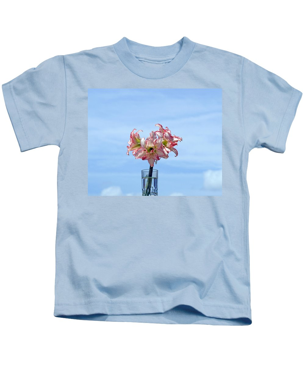 Amaryllis; Belladonna; Lily; Naked; Ladies; Lady; Florida; Spring; Sky; Bloom; Blooming. Flower; Blo Kids T-Shirt featuring the photograph Amaryillis Belladonna Against The Spring Florida Sky by Allan Hughes