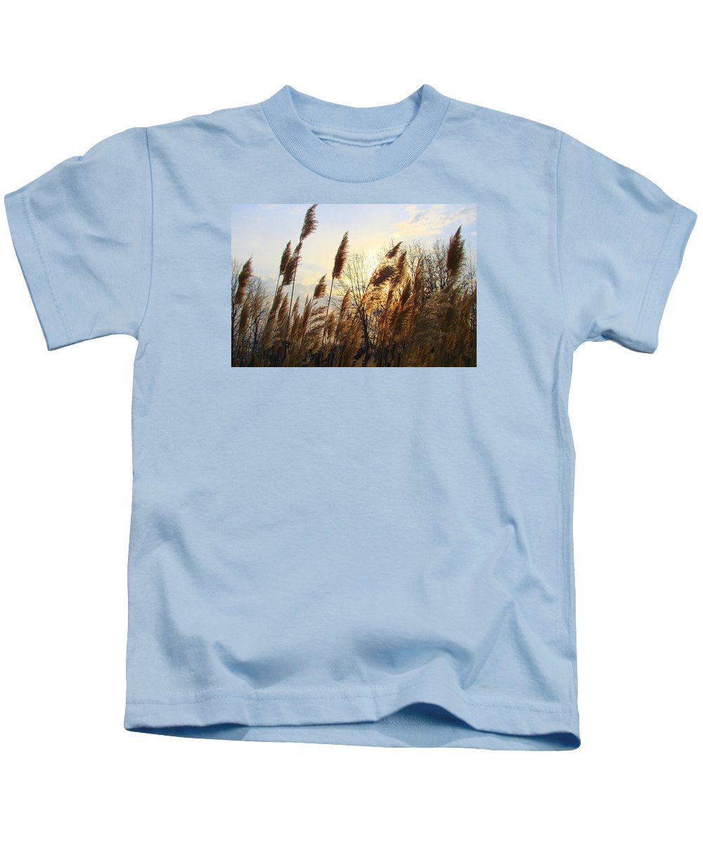 Pampasgrass Kids T-Shirt featuring the photograph Amber Waves Of Pampas Grass by J R Seymour