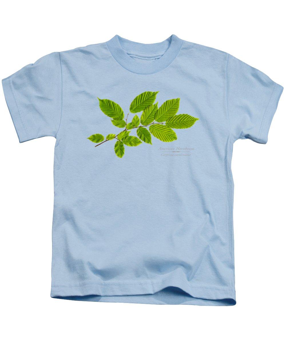 American Hornbeam Kids T-Shirt featuring the photograph American Hornbeam by Christina Rollo
