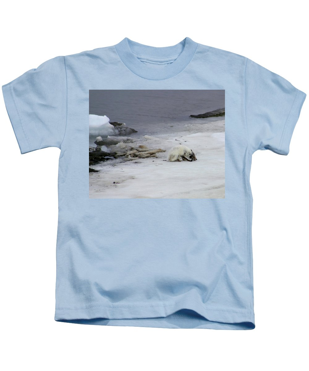 Arctic Fox Kids T-Shirt featuring the photograph Arctic Fox Eating by Anthony Jones