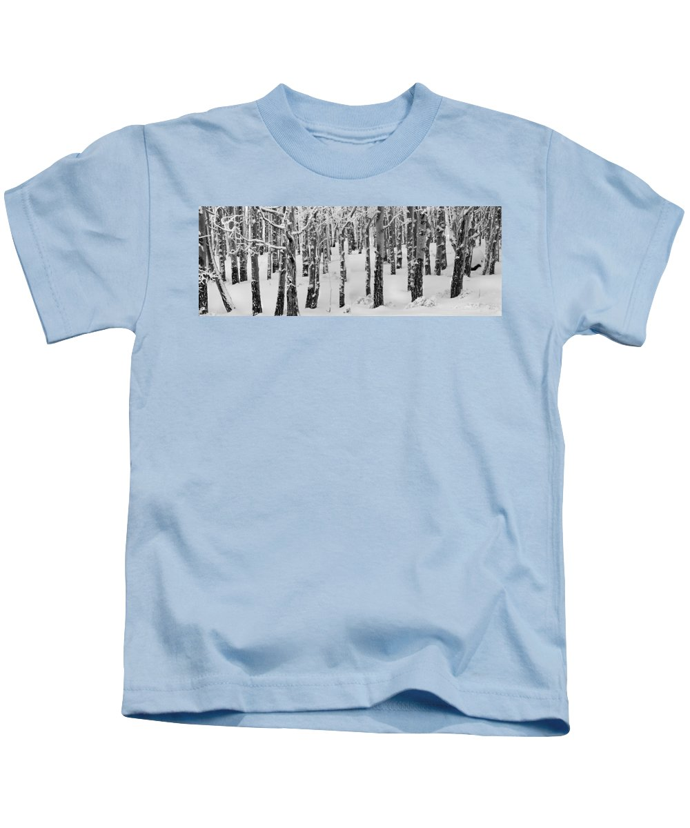 Black And White Kids T-Shirt featuring the photograph Aspens In Winter by Leland D Howard
