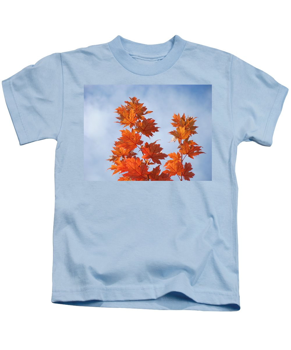 Autumn Kids T-Shirt featuring the photograph Autumn Tree Leaves Art Prints Blue Sky White Clouds by Baslee Troutman