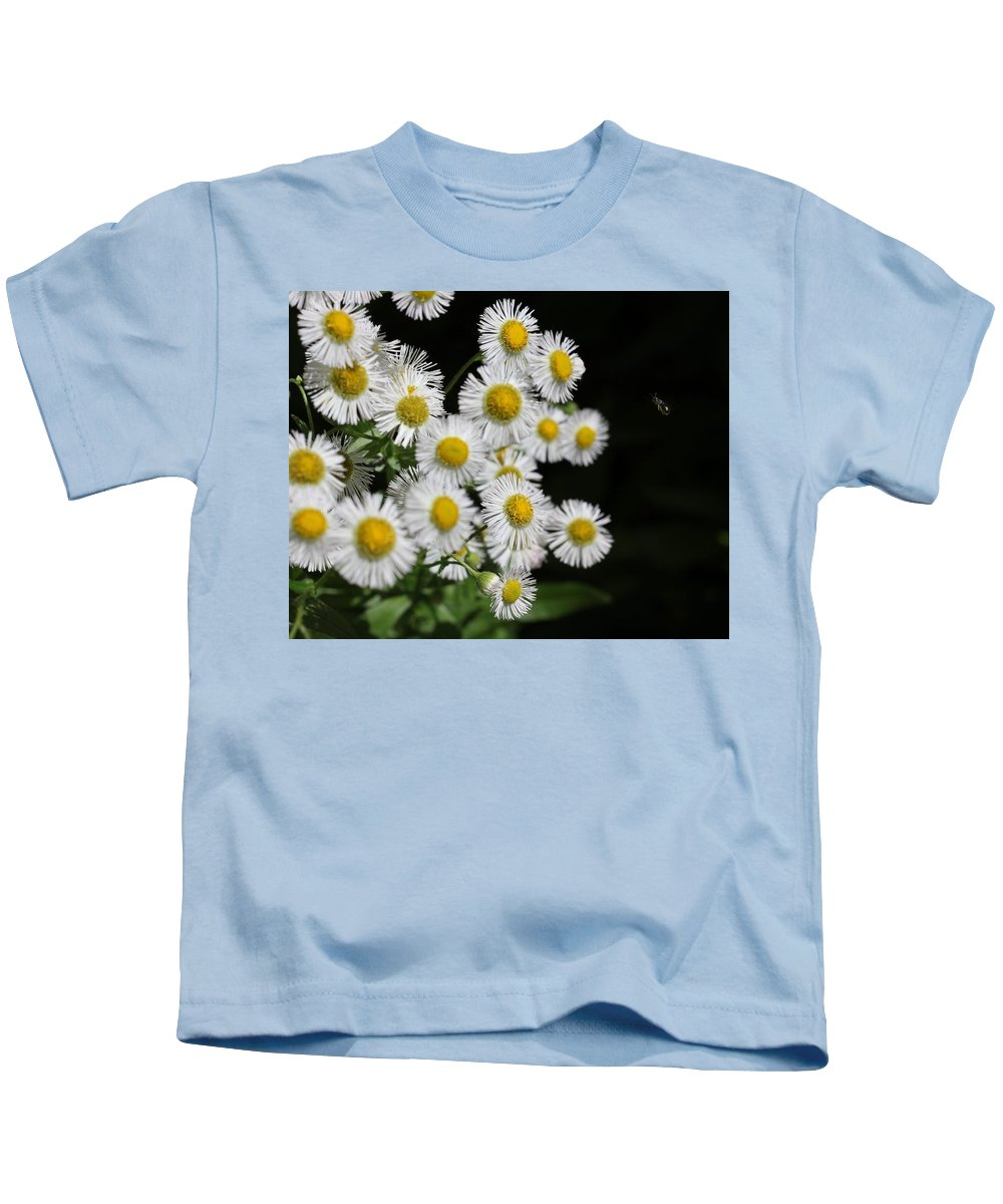 Flower Kids T-Shirt featuring the photograph Bee And Wildflower by Charles Van Wagenen Jr