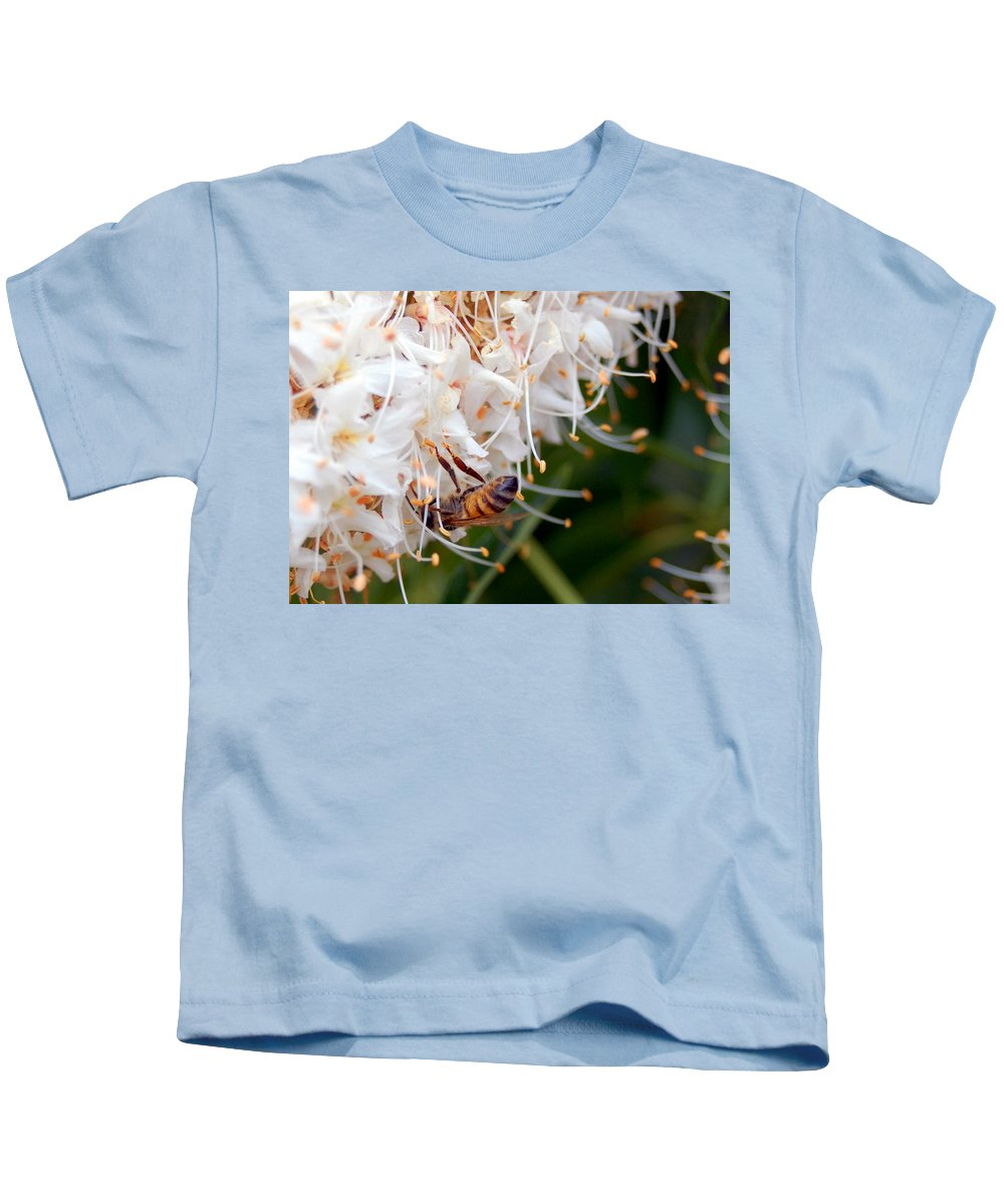 Flower Kids T-Shirt featuring the photograph Bee On Flowers 1 by Amy Fose