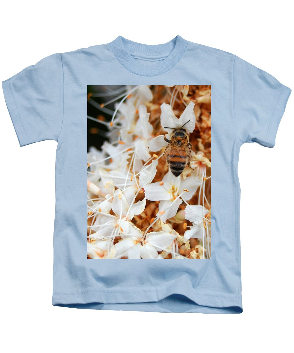 Flower Kids T-Shirt featuring the photograph Bee On Flowers 2 by Amy Fose