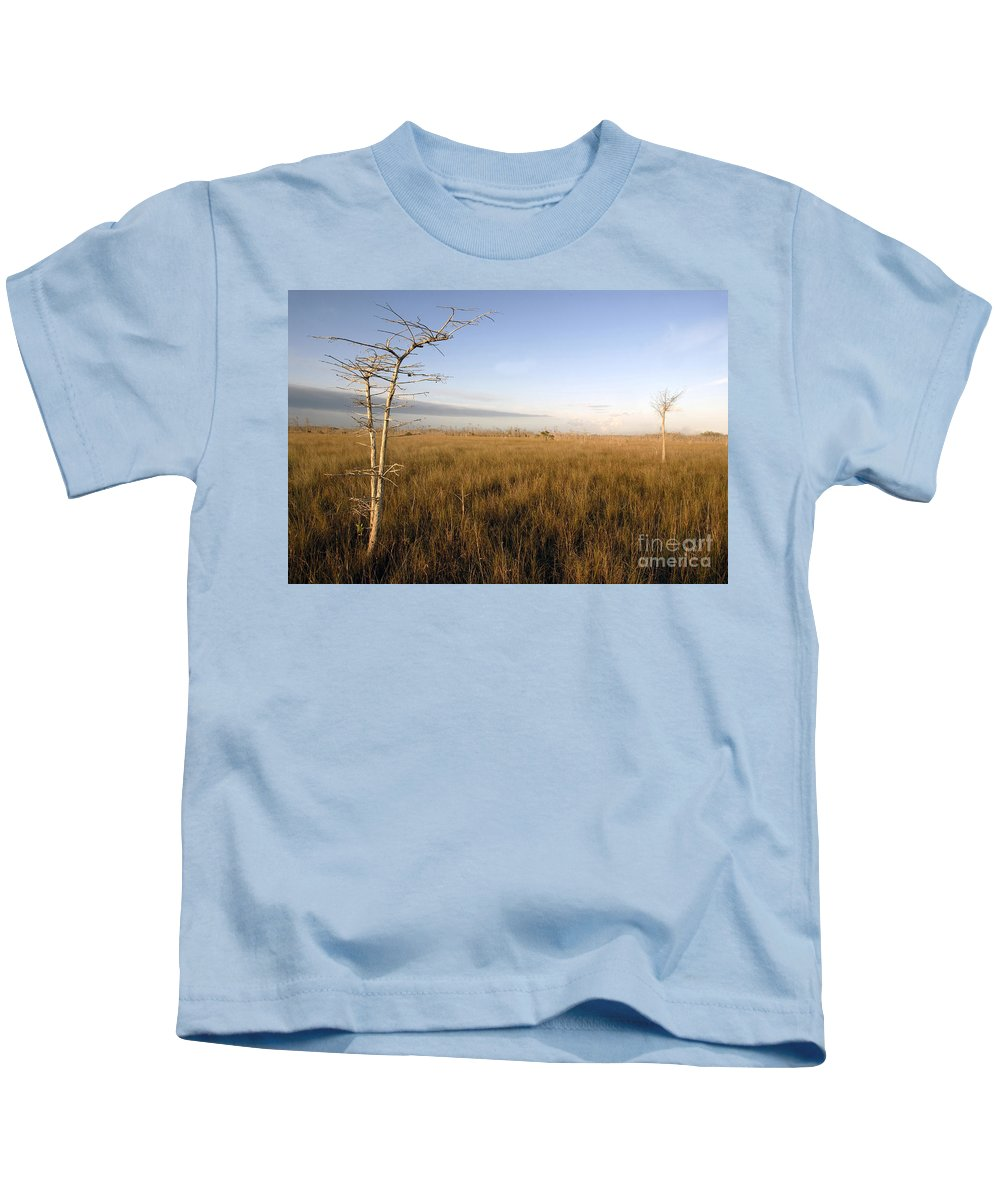 Bald Cypress Kids T-Shirt featuring the photograph Big Cypress by David Lee Thompson