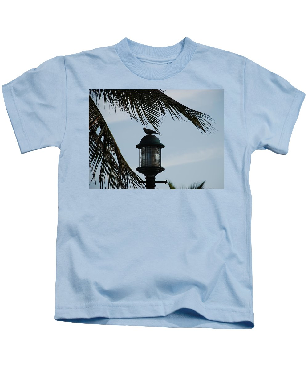 Lamp Post Kids T-Shirt featuring the photograph Bird On A Light by Rob Hans
