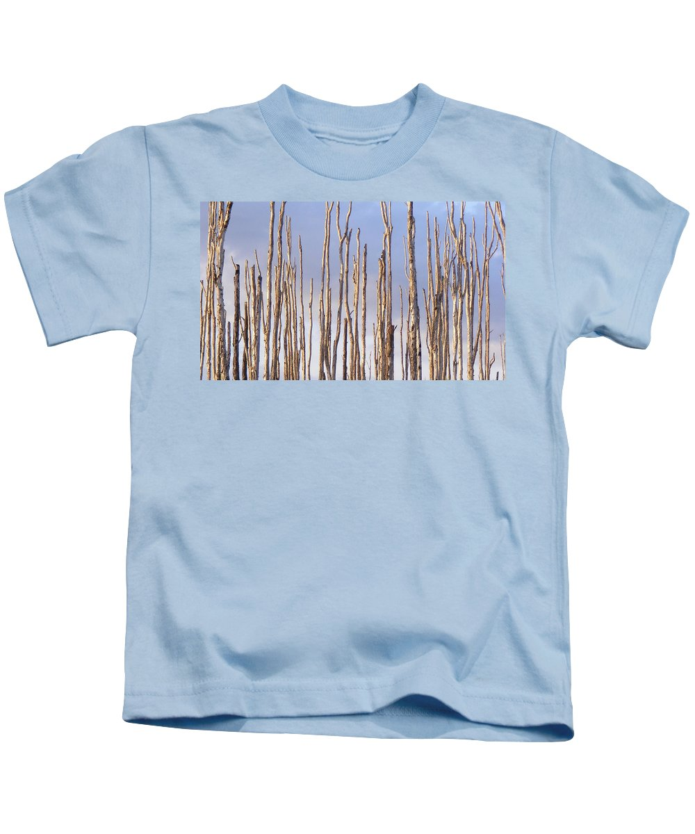 Forest Kids T-Shirt featuring the photograph Brave Soldiers by Ed Smith