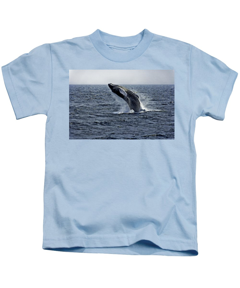 Breaching Kids T-Shirt featuring the photograph Breaching Humpback Whale in the Deep Blue Sea, Gloucester, ME, Atlantic Ocean by Michael Bessler