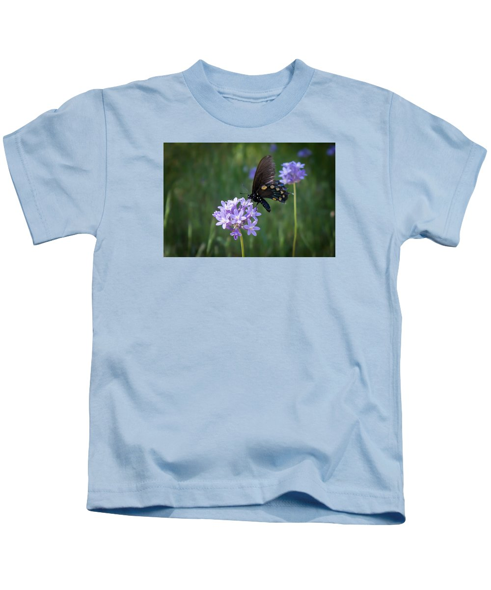 Kids T-Shirt featuring the photograph Butterfly 4 by Reed Tim