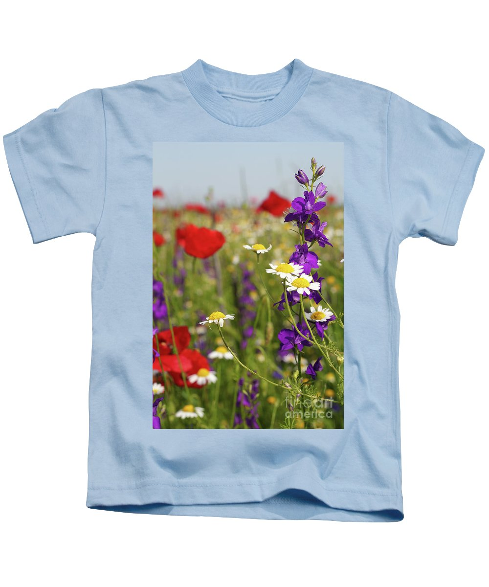 Camomile Kids T-Shirt featuring the photograph Colorful Wild Flowers Nature Spring Scene by Goce Risteski