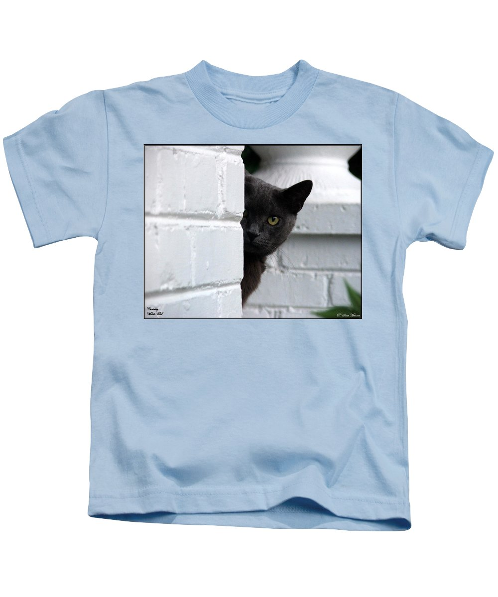 Cats Kids T-Shirt featuring the photograph Curiosity by Robert Meanor