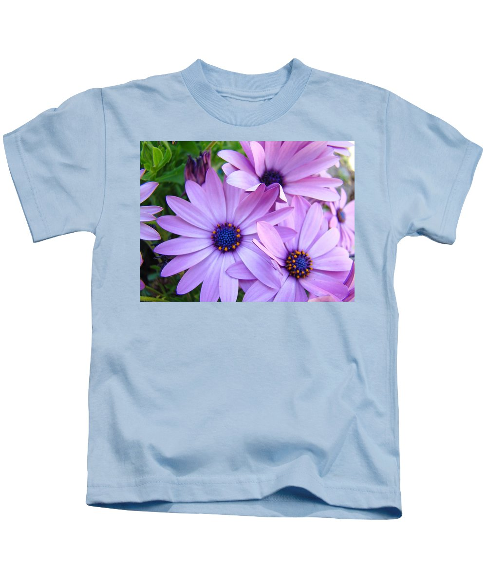 Daisy Kids T-Shirt featuring the photograph Daisies Lavender Purple Daisy Flowers Baslee Troutman by Baslee Troutman