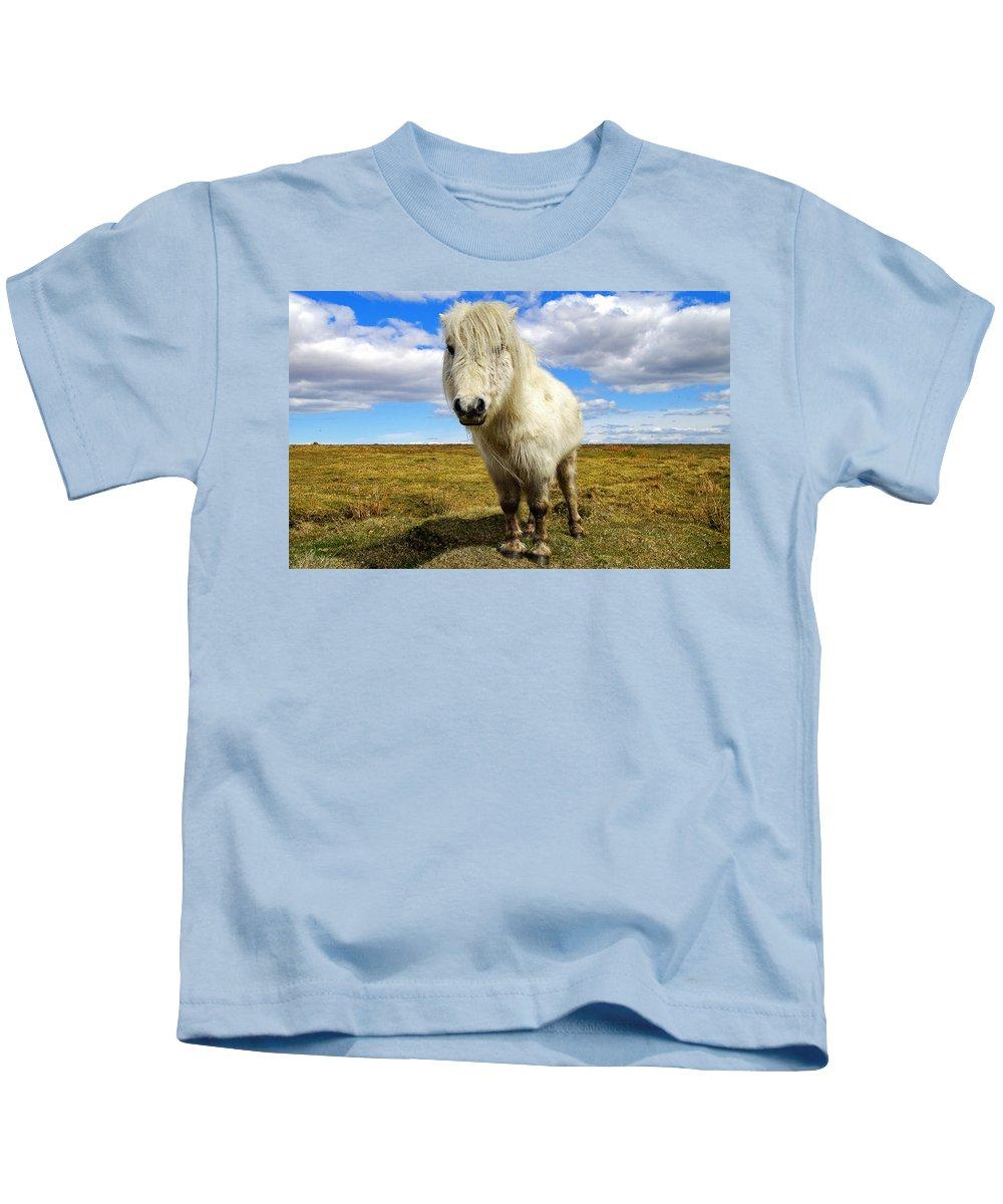 Dartmoor Kids T-Shirt featuring the photograph Dartmoor Pony by Rob Hawkins