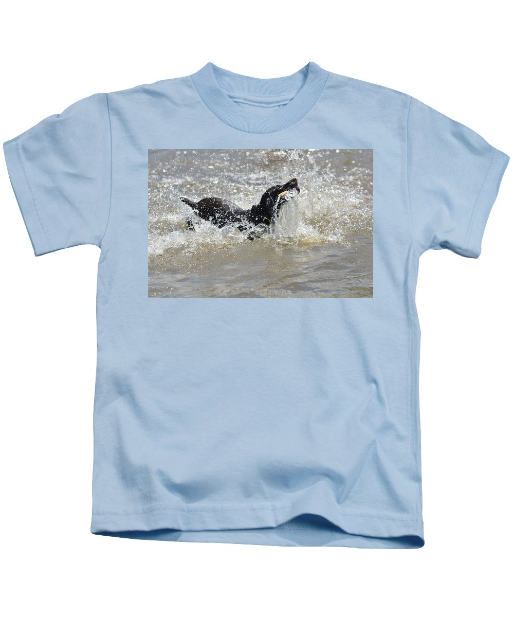 German Shorthaired Pointer Kids T-Shirt featuring the photograph Day On The River by Tammy Mutka