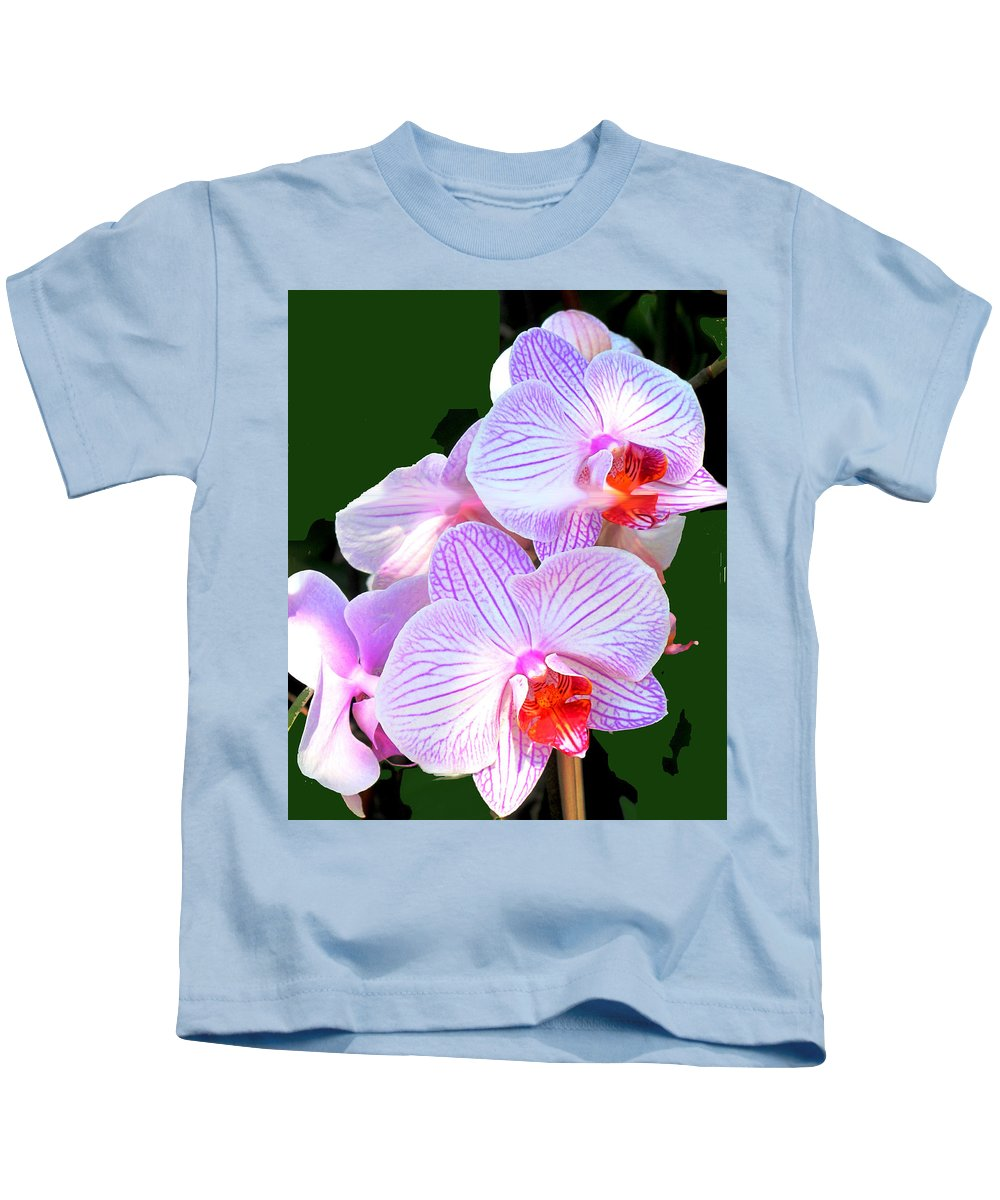 Flower Kids T-Shirt featuring the photograph Delicate by Ian MacDonald