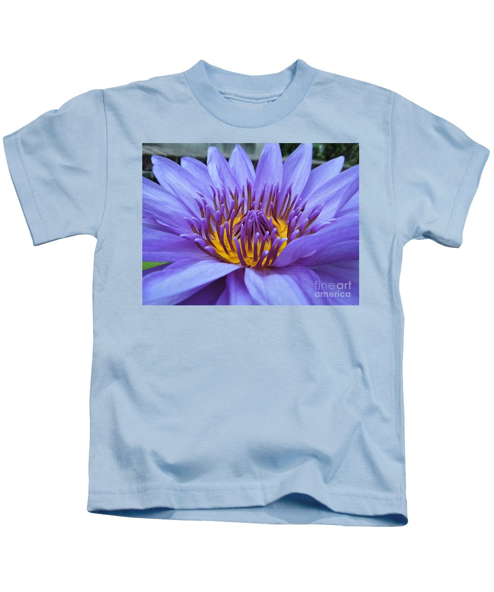 Water Lily Kids T-Shirt featuring the photograph Divine by Chad and Stacey Hall