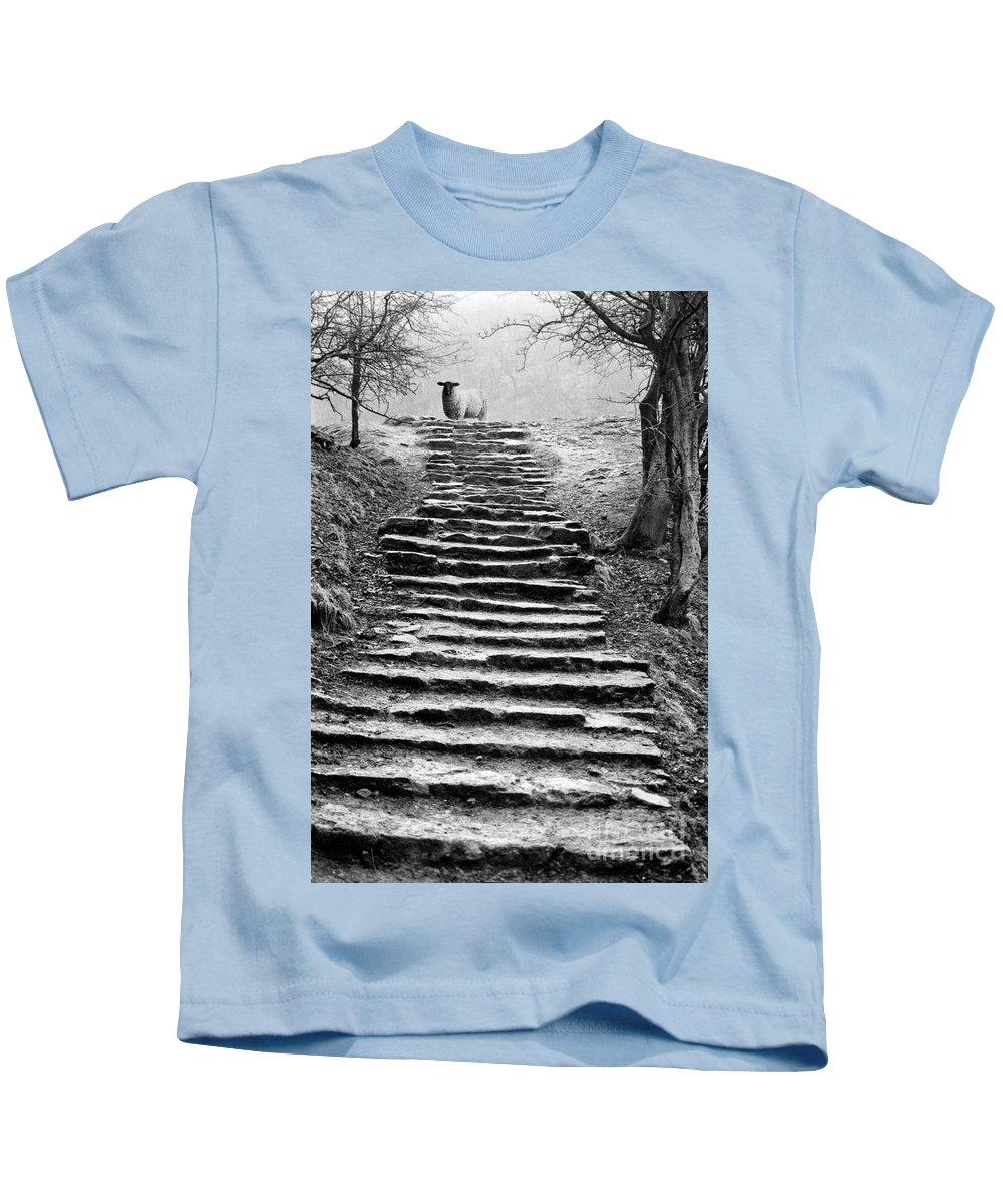Animal Kids T-Shirt featuring the photograph Dovedale Steps by John Edwards