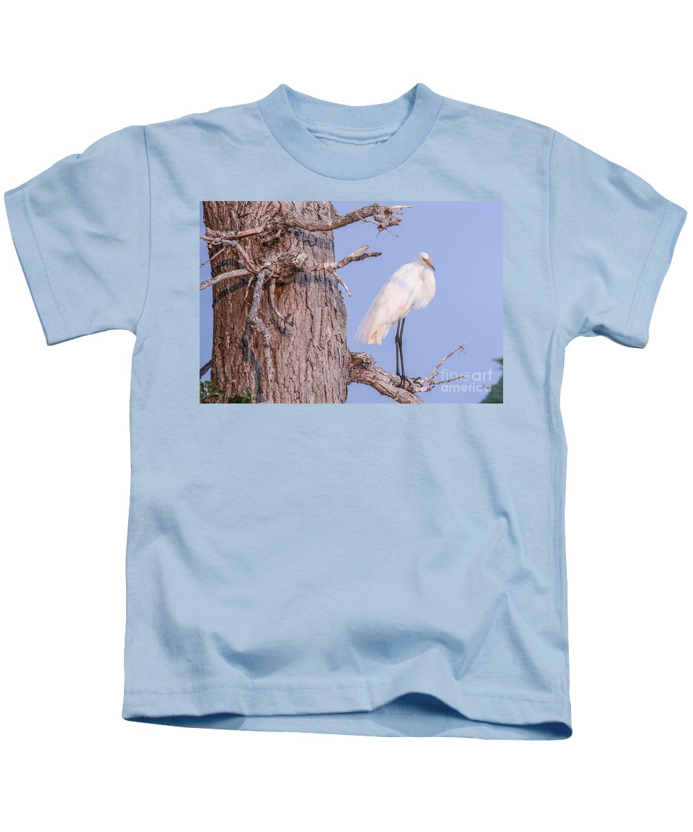 Egret Kids T-Shirt featuring the photograph Egret In Tree by Nikki Vig
