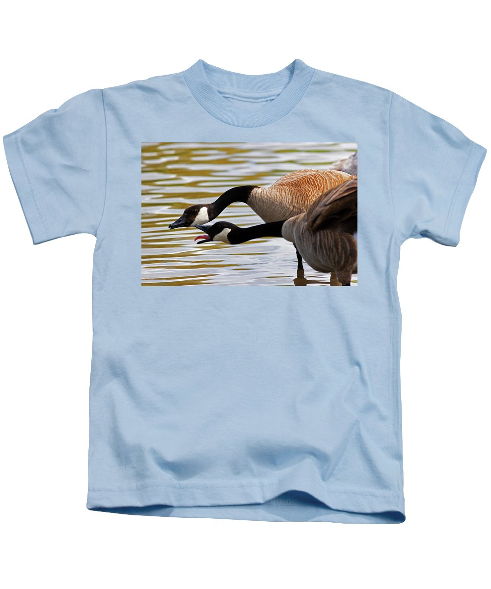 Canada Goose Kids T-Shirt featuring the photograph Excuse Me by Randall Ingalls
