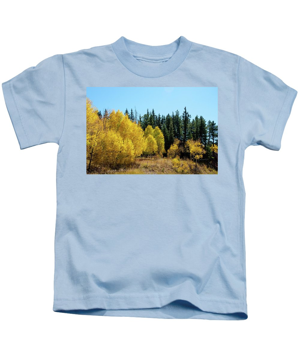 Colorado Kids T-Shirt featuring the photograph Explosion Of Yellow by John Bartelt