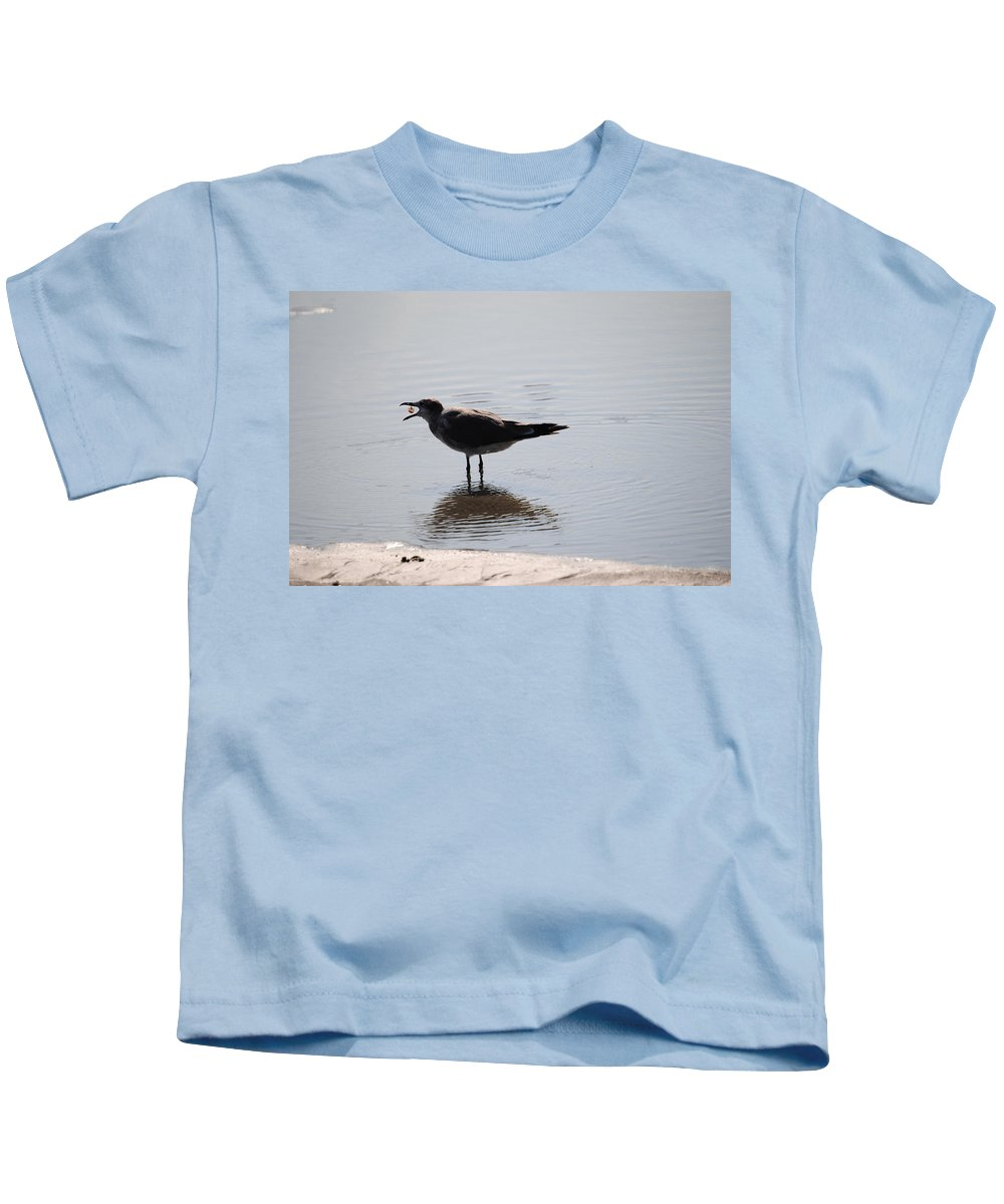 Beach Kids T-Shirt featuring the photograph Feeding Time by Eric Liller