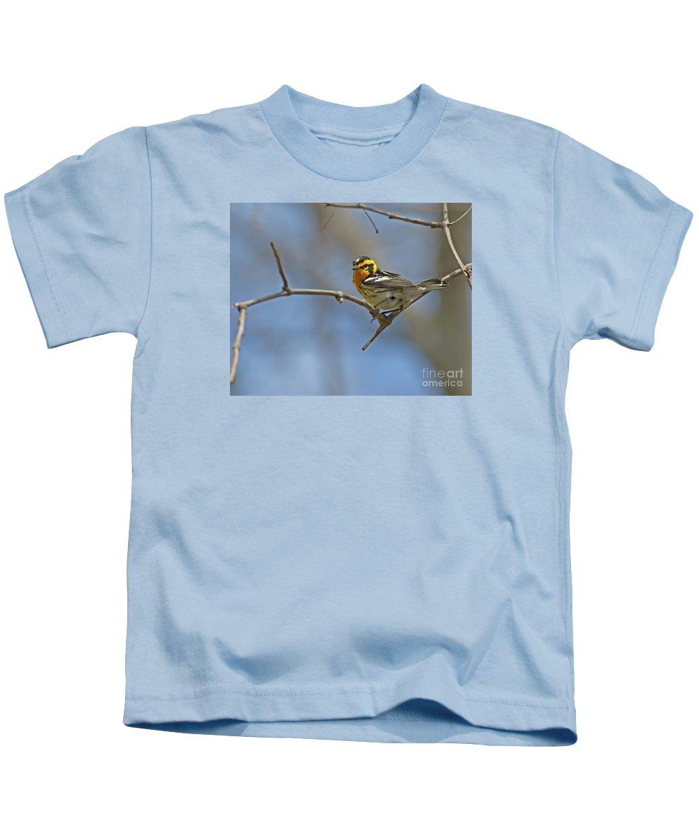 Blackburnian Warbler Kids T-Shirt featuring the photograph Fire Throat... by Nina Stavlund