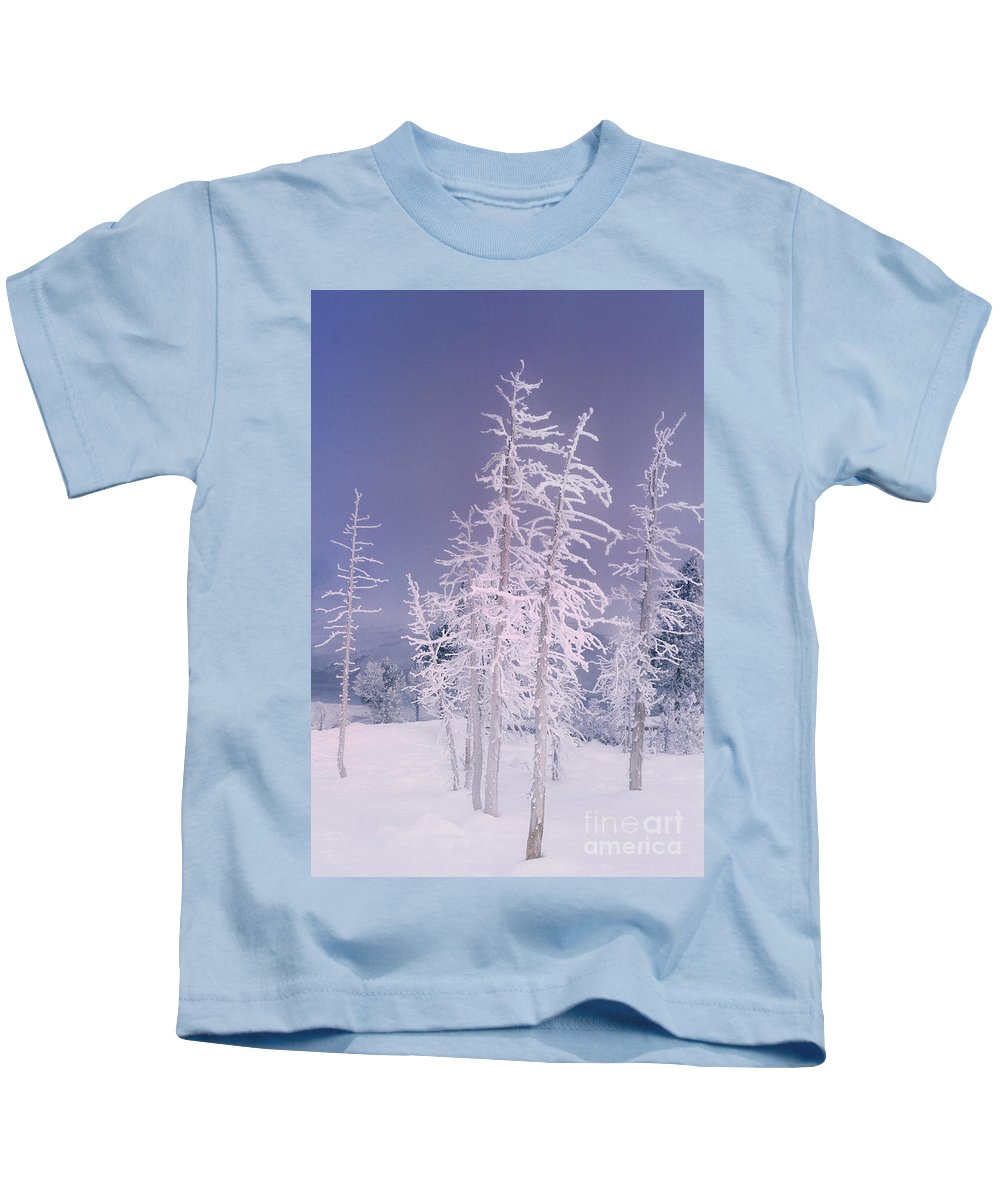 North America Kids T-Shirt featuring the photograph Ghost Trees Yellowstone National Park by Dave Welling