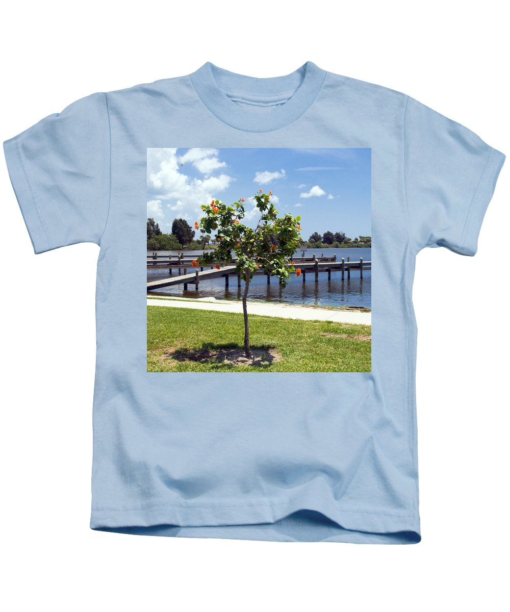 Hibiscus; Rosasinensis; Rosa; Sinensis; Rosa-sinensis; Tree; Bush; Shrub; Plant; Flower; Flowers; Fl Kids T-Shirt featuring the photograph Hibiscus Rosasinensis With Fruit On The Indian River In Florida by Allan Hughes