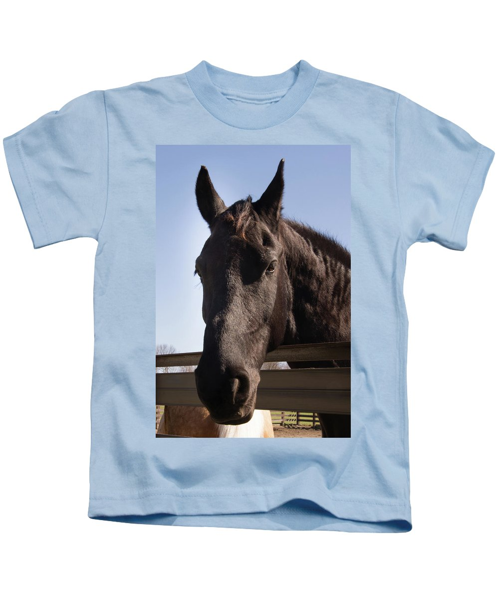 Horse Kids T-Shirt featuring the photograph Horse By A Fence. by Diane Schuler