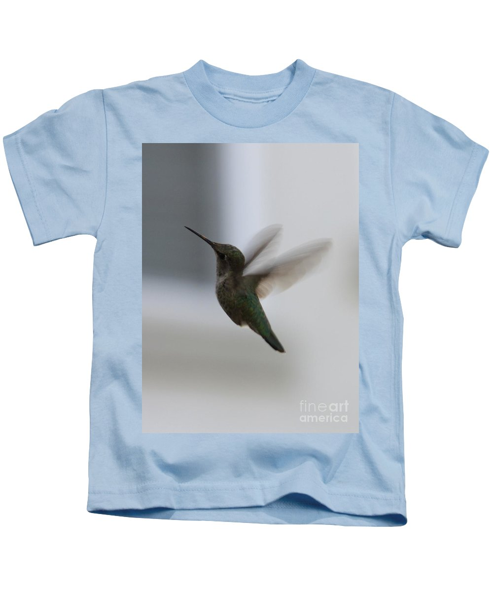 Hummingbird Kids T-Shirt featuring the photograph Hummingbird In Flight by Carol Groenen