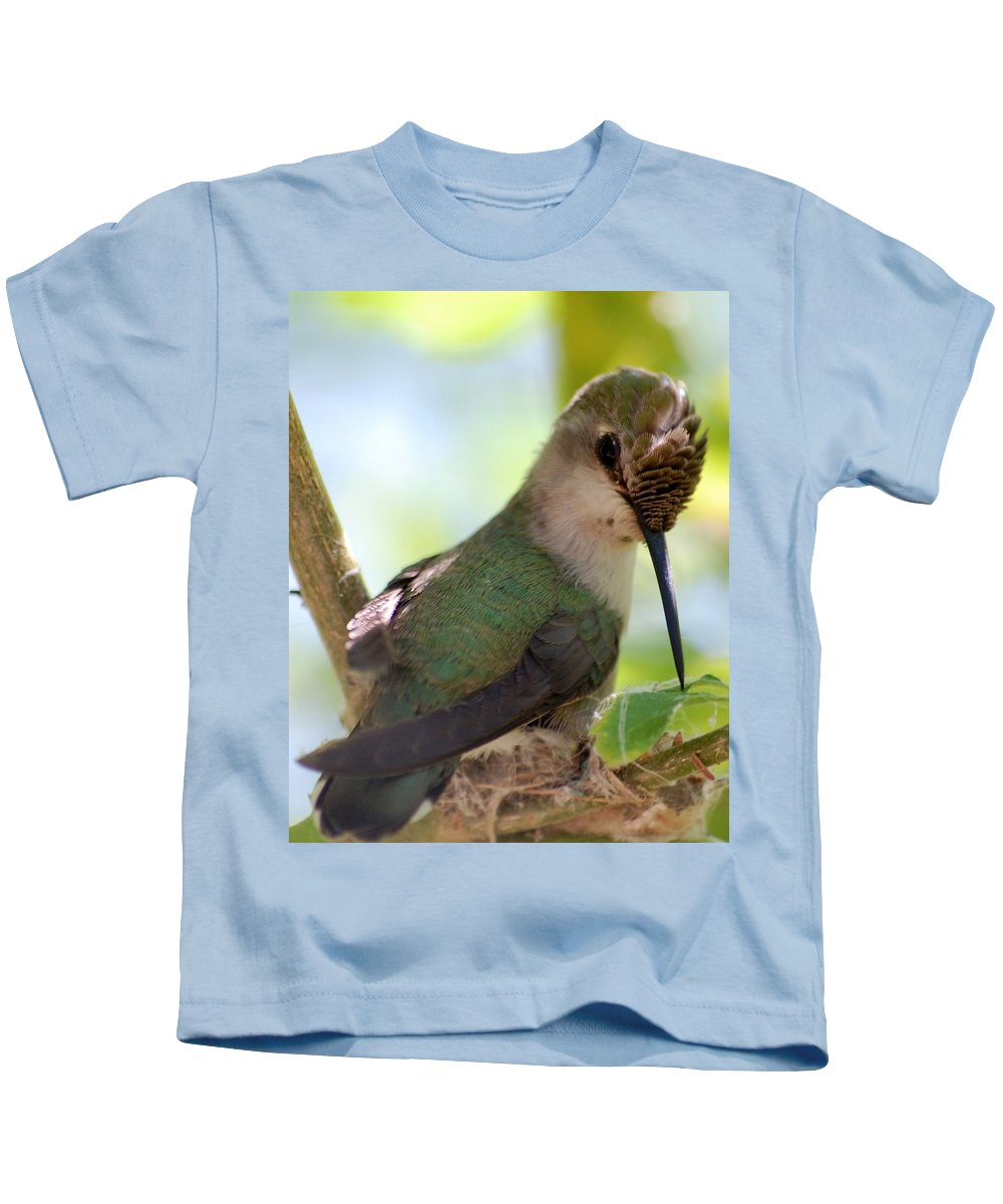 Hummingbird Kids T-Shirt featuring the photograph Hummingbird With Small Nest by Amy Fose