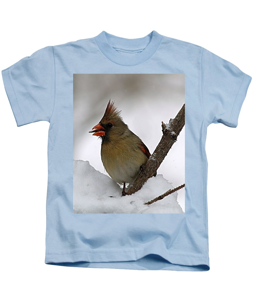 Bird Kids T-Shirt featuring the photograph I Love Seeds by Gaby Swanson