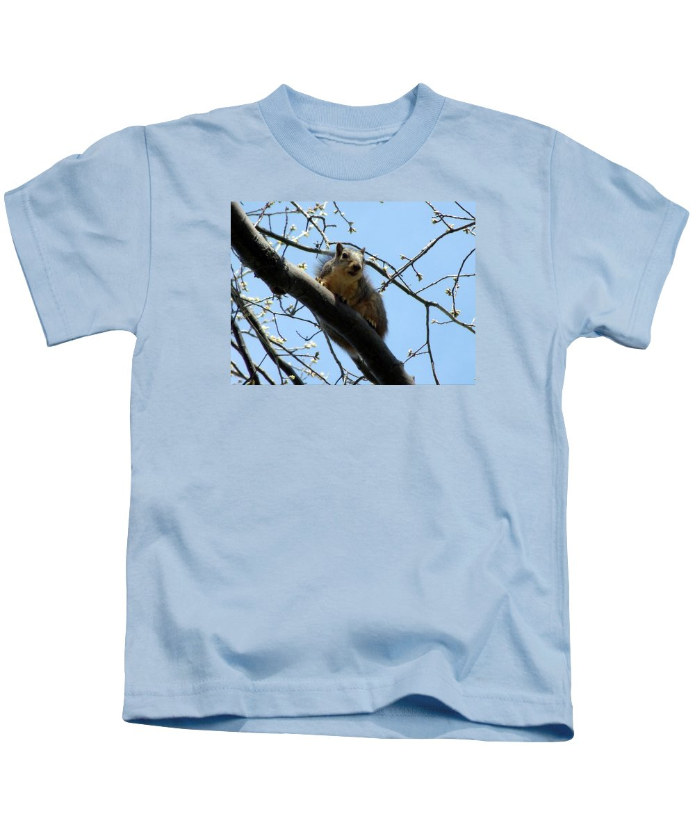 Squirrel Kids T-Shirt featuring the photograph I See You by Wendy Gertz