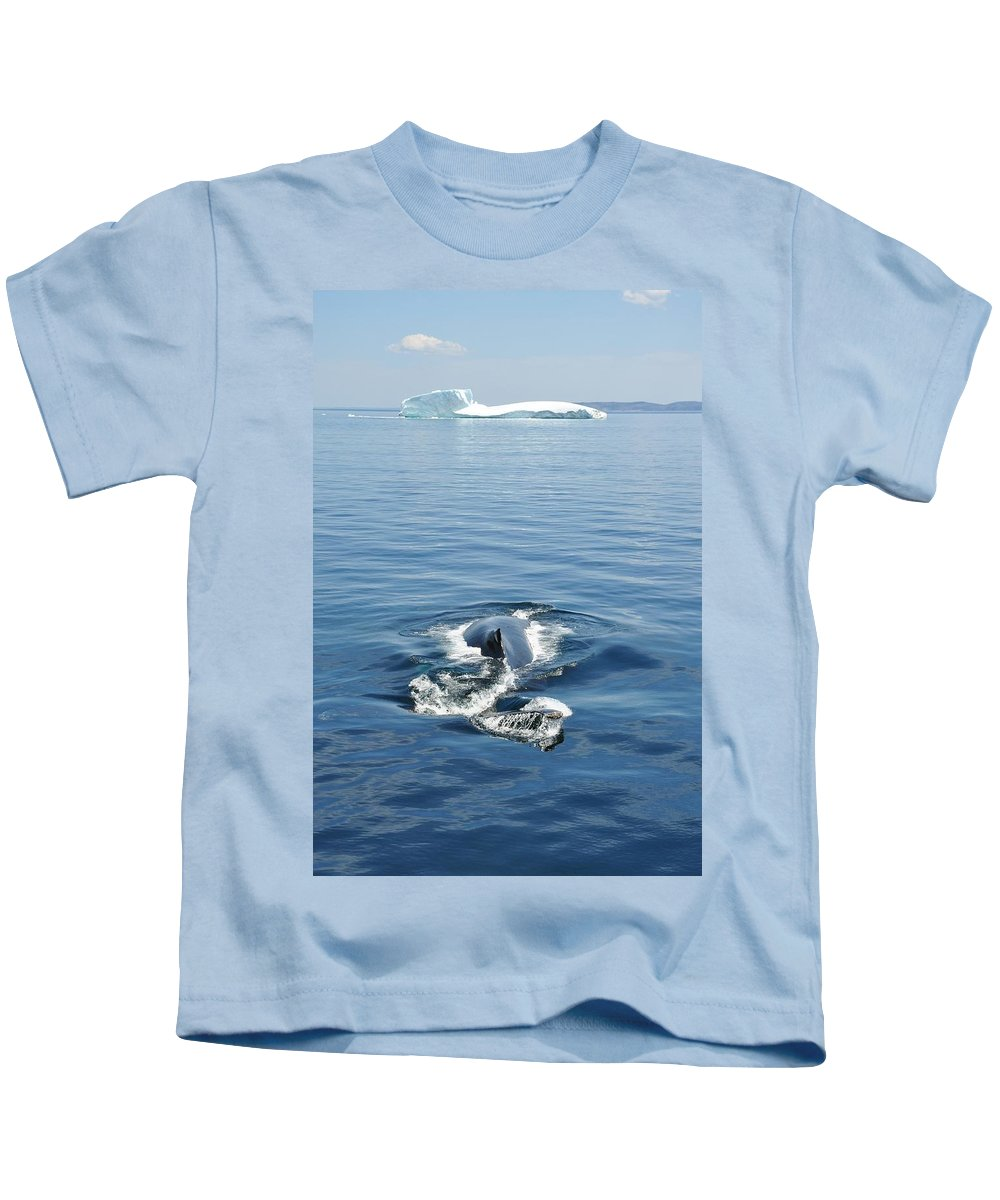 Seascape Kids T-Shirt featuring the photograph Iceberg And Humpback by Natasha Sweetapple