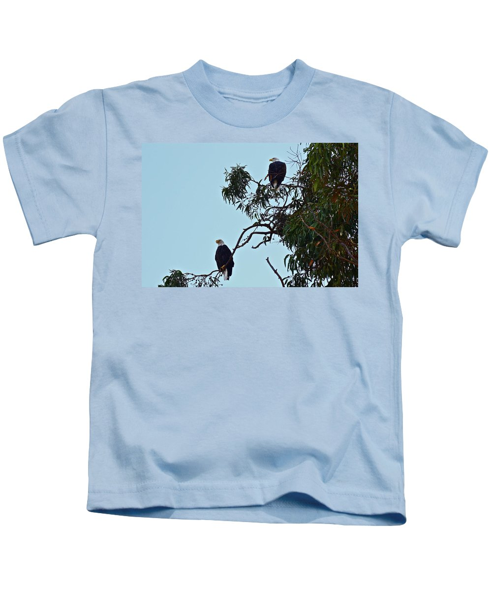 Birds Kids T-Shirt featuring the photograph Mr. And Mrs. Bald by Diana Hatcher
