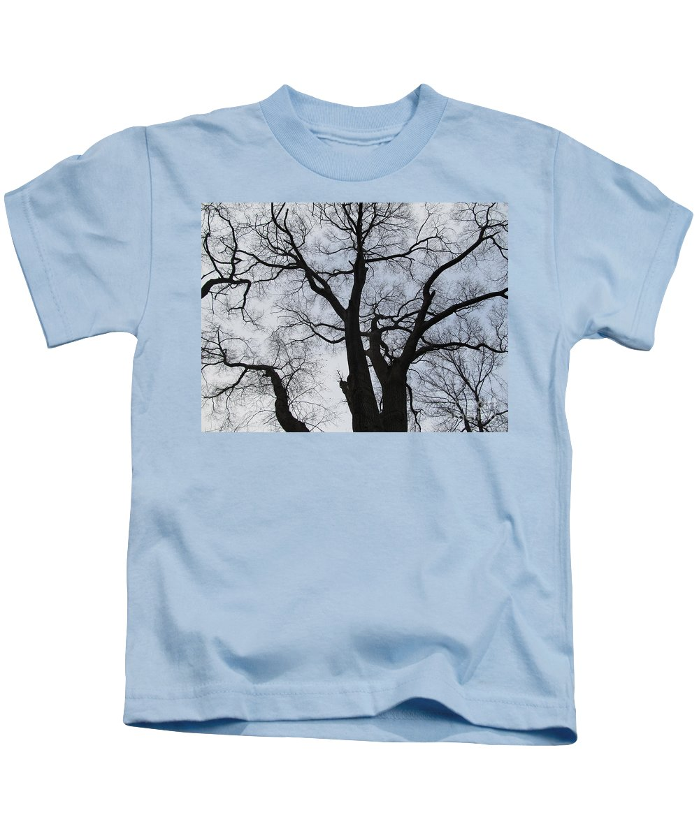 Winter Skyscape Overcast Old Oak Trees Oldgrowth Winter Oak Winter Trees Gray Sky Nature Prints Office Art Fine Art Forest Landscapes Treescapes Flora Kids T-Shirt featuring the photograph Old Oak Overcast by Joshua Bales