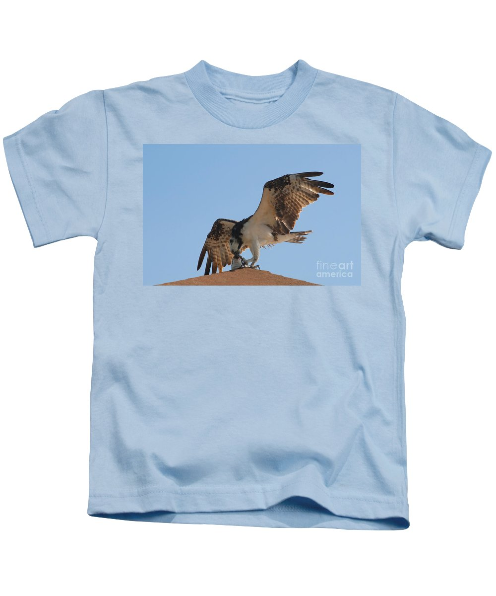 Osprey Kids T-Shirt featuring the photograph Osprey by David Lee Thompson