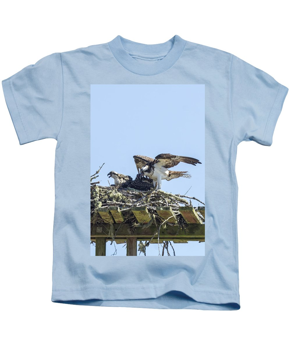 Osprey Kids T-Shirt featuring the photograph Osprey Family Portrait No. 1 by Belinda Greb