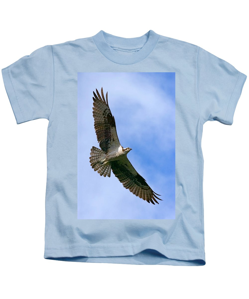 Osprey Kids T-Shirt featuring the photograph Osprey by Randall Ingalls