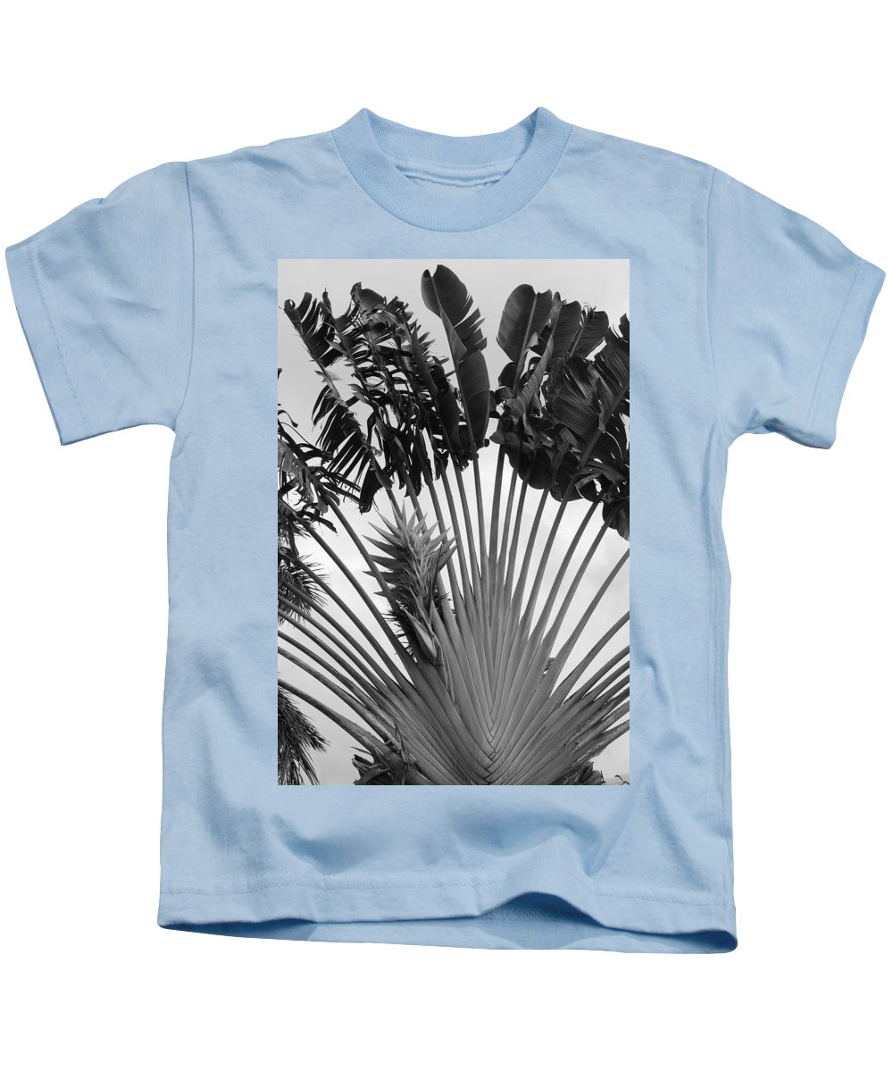 Macro Kids T-Shirt featuring the photograph Palm Frons by Rob Hans