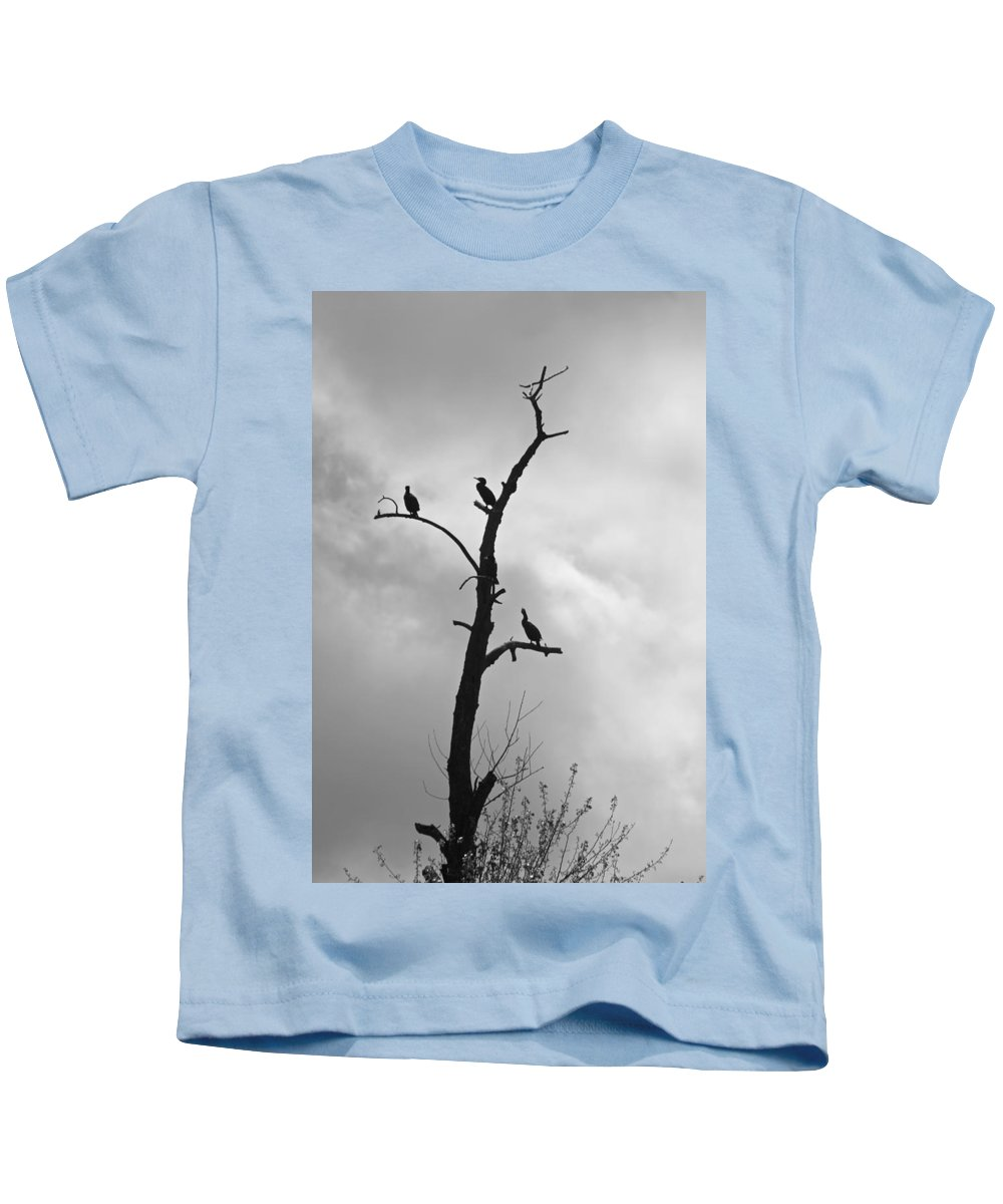 Birds Kids T-Shirt featuring the photograph Perch by Christine Patterson