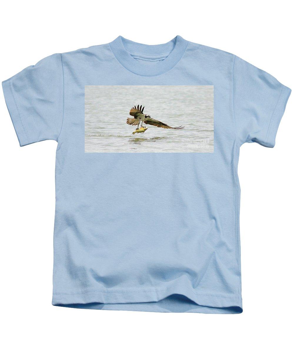 Osprey Kids T-Shirt featuring the photograph Perch On The Run 2 by Deborah Benoit