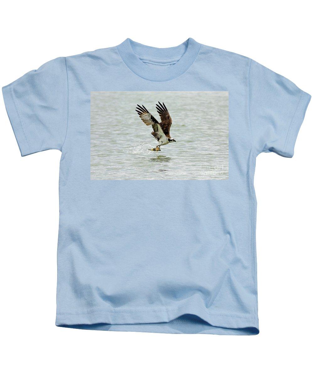 Osprey Kids T-Shirt featuring the photograph Perch On The Run by Deborah Benoit