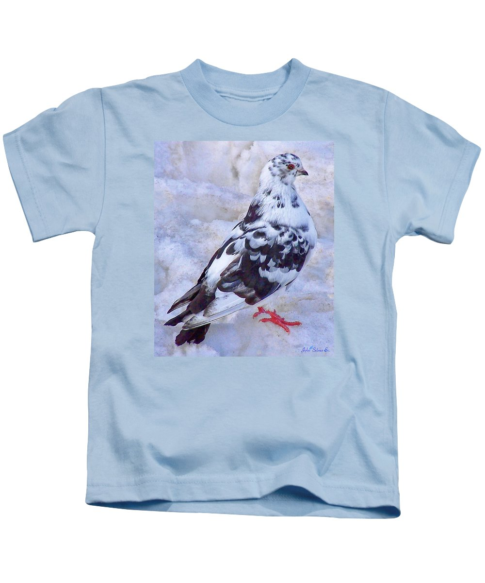 Pigeons Kids T-Shirt featuring the photograph Pigeon On Ice 1 by John Selmer Sr